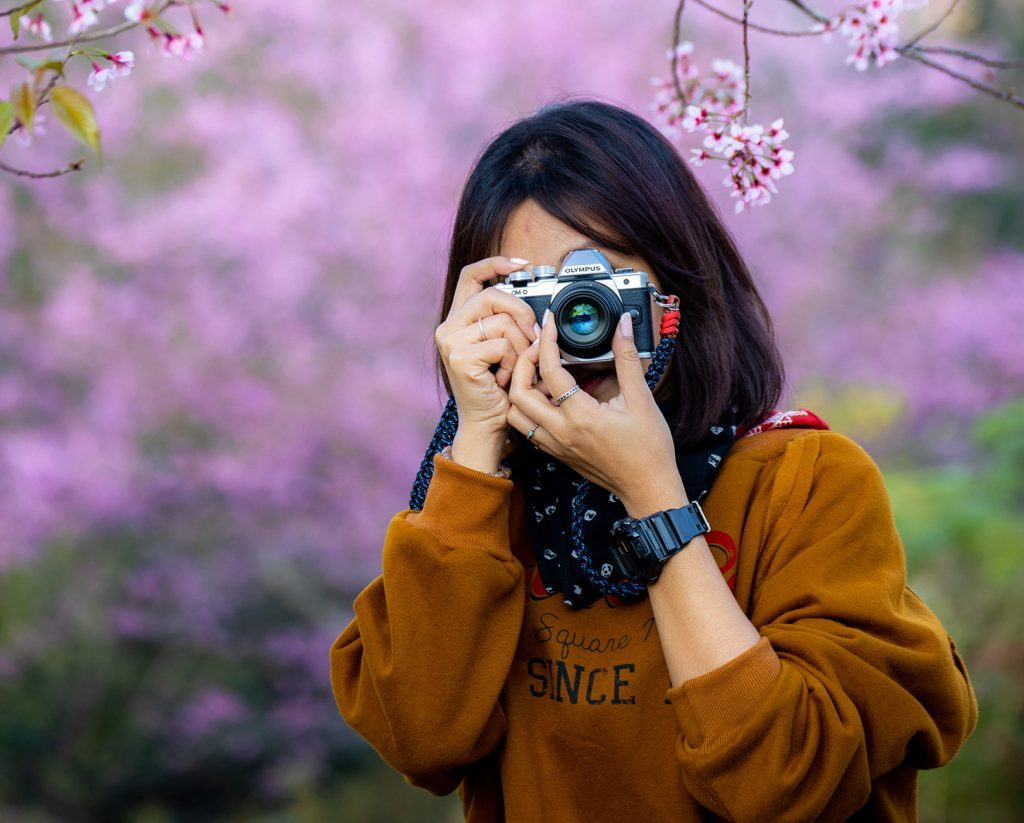 Best cameras for beginners in 2021